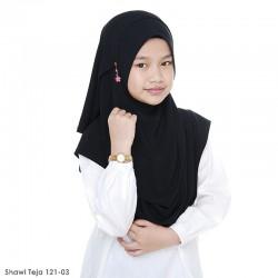 Teja Shawl 121-03